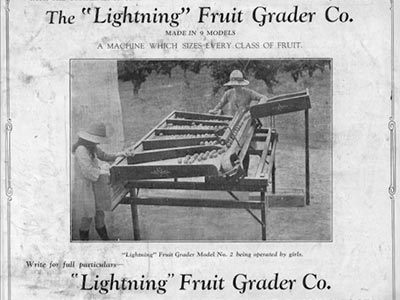 Lightning Apple Sorting Machine